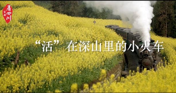 """""""活""""在深山里的小火车"""